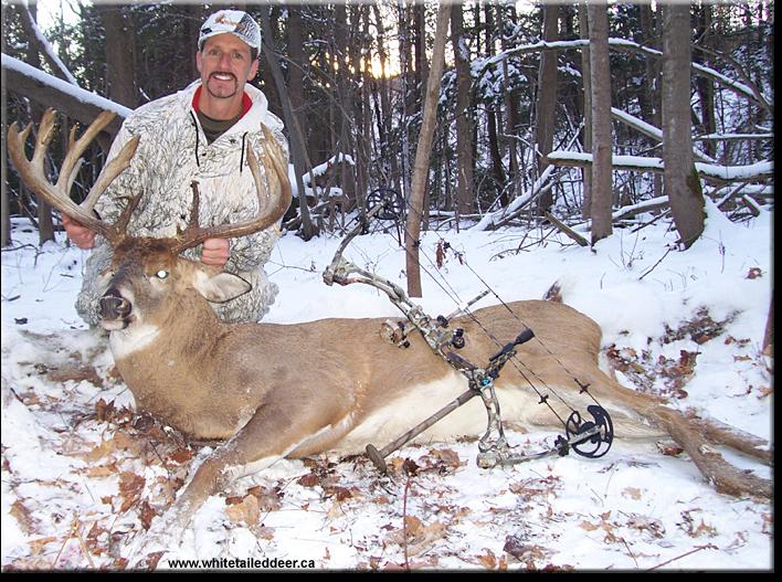 Ontario Record Whitetail Deer Non-typical